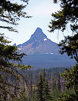 Located in Central Oregon at the eastern foothills of the Cascade Mountains, Bend is an energetic city with a fast growing population of over 80,995. Bend is noted for its scenic setting, year-round recreational activities and growing economy. At an elevation of 3,625 feet, the city covers 32 square miles.