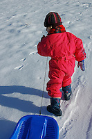 Young girl towing a sled along in the snow.