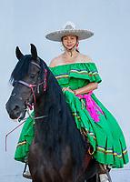 Latin Dancing Horses of Washington, Seafair Torchlight Parade, Seattle, WA, USA.