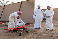 "United Arab Emirates (UAE). Dubai. Humaid Al Tayer (C with sunglasses) is a rich Emirati man with a passion for falcons. He is the owner of A&H Falcons which take parts in various falcons' competitions in the UAE. On a remote desert area, as part of daily training, the hawk will fly  behind a remote controlled airplane and tries to catch a prey tied on a rope. All men wear the traditional white thobes. A thawb (thobe, dishdasha, kandora) is an ankle-length garment, usually with long sleeves, similar to a robe, kaftan or tunic, commonly worn in the Arabian Peninsula. The headdress is called ghutrah. The Gyr Peregrine falcon is a hybrid of the world's largest hawk, the Gyrfalcon and the third largest hawk, the Peregrine falcon. Falcons are birds of prey in the genus Falco, which includes about 40 species. Adult falcons have thin, tapered wings, which enable them to fly at high speed and change direction rapidly. Additionally, they have keen eyesight for detecting food at a distance or during flight, strong feet equipped with talons for grasping or killing prey, and powerful, curved beaks for tearing flesh. Falcons kill with their beaks, using a ""tooth"" on the side of their beaks. The United Arab Emirates (UAE) is a country in Western Asia at the northeast end of the Arabian Peninsula. 22.02.2020  © 2020 Didier Ruef"