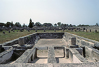 Italy: Paestum--Hellenistic swimming pool. In foreground, at a guess, sluices for piped in water, and forms over which boards were laid. Photo '83.