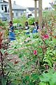 Edible School Yard