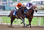 February 19, 2012. Drill and Martin Garcia(outside) defeat American Act and Martin Pedroza to win the San Vicente Stakes. at Santa Anita Park in Arcadia, CA.
