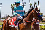 ARCADIA, CA  JULY 4:  #1 Classier, ridden by Mike Smith, in the winners circle after winning the Los Alamitos Derby (Grade lll) on July 4, 2021 at Los Alamitos Race Course in Los Alamitos, CA.  (Photo by Casey Pnillips/ Eclipse Sportswire/ CSM)
