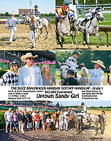 Uptown Sandy Girl winning The Buzz Brauninger Distaff Handicap again at Delaware Park on 8/31/19