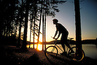 Light shimmers on water as bicycle rider power rides uphill between trees beside lake at park. Youth Young Male. Pennsylvania United States.