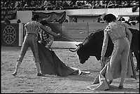 16 Mai 1976. Vue d'une corrida dans les arènes de Toulouse.