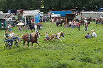 Priddy Horse Fair Somerset Uk 2009 Young boys trotting racing each other.