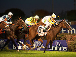Nov.4, 2011.Perfect Shirl ridden by John Velazquez and trained by Roger L. Attfield leading in the stretch and winning the  Emirates Airline Breeders' Cup Filly & Mare Turf at Churchill Downs, Louisville, KY
