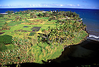 The remote and secluded lush coastline of Keanae peninsula on Maui's east side, with black sand beach in foreground.