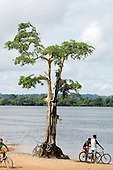 Altamira, Brazil. Two young men with bicycles beside the Xingu river next to a tree with its roots exposed by erosion.