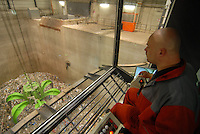 GERMANY, Stavenhagen, modern power station which burns waste to produce power and steam for Pfanni potato factory / DEUTSCHLAND Stavenhagen, Kraftwerk der Firma Nehlsen verheizt Ersatzbrennstoffe wie sortierten Hausmuell und Abfall , mit der gewonnenen Energie Strom und Dampf wird der Nahrungsmittelhersteller Pfanni Teil des Unilever Konzern vertraglich versorgt