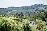 'La Primavera' (Spring) in summer!<br /> 111st Milano-Sanremo 2020 (1.UWT)<br /> 1 day race from Milano to Sanremo (305km)<br /> <br /> the postponed edition > exceptionally held in summer because of the Covid-19 pandemic calendar reshuffle