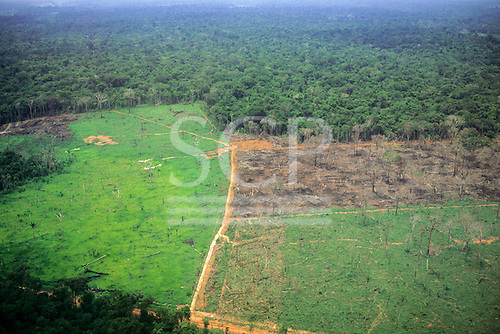 Amazon, Brazil. Aerial view of partly deforested land showing established grassland, newly burned land and rainforest.