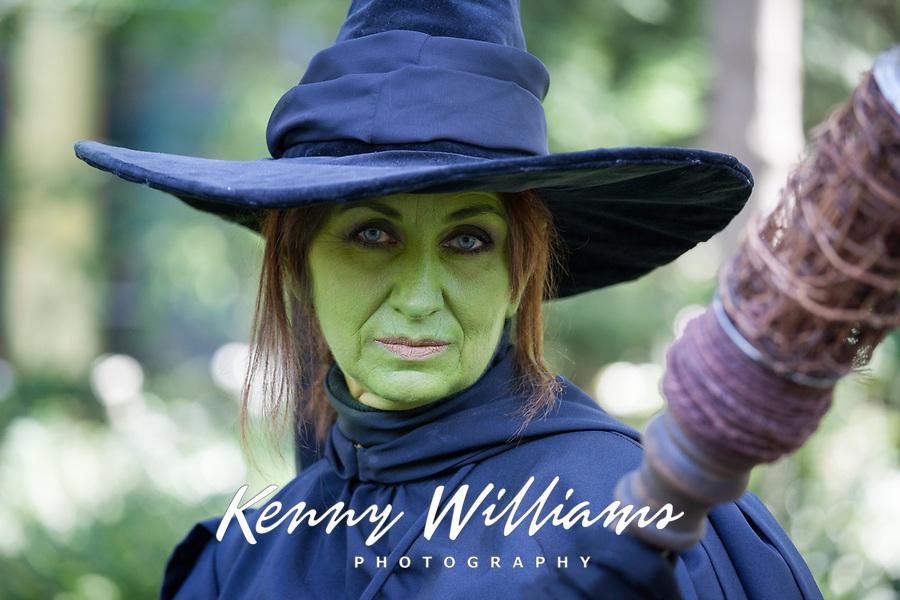 Theodora the Witch cosplay, Pax Prime 2015, Seattle, Washington State, WA, America, USA.