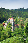 Germany; Free State of Thuringia, Elgersburg: Elgersburg Castle | Deutschland, Thueringen, Elgersburg: Schloss Elgersburg
