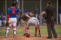 AZL Reds shortstop Reyny Reyes (16) receives attention from team trainer Clete Sigwart after being hit in the helmet with a pitch during an Arizona League game against the AZL Cubs 2 at Sloan Park on June 18, 2018 in Mesa, Arizona. AZL Cubs 2 defeated the AZL Reds 4-3. (Zachary Lucy/Four Seam Images)