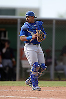 Kansas City Royals catcher Xavier Fernandez (29) during an Instructional League game against the Cleveland Indians on October 9, 2013 at Surprise Stadium Training Complex in Surprise, Arizona.  (Mike Janes/Four Seam Images)