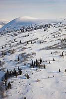 Darby Mountains near Council, Alaska, on the Seward Peninsula, western Alaska.