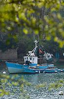 Europe/France/Bretagne/56/Morbihan/ Golfe du Morbihan/ Vannes: Bateaux de pêche à la presqu'île de Conleau