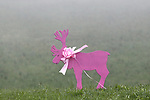 Giro d'Italia - Cycling Tour of Italy 2021 under Covid-19 Pandemic. Stage 14 Cittadella Monte Zoncolan. In action on 22/05/2021 in Sutrio, Italy.  <br /> A pink animal  close to the road