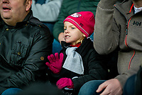 Fans <br /> Re: Behind the Scenes Photographs at the Liberty Stadium ahead of and during the Premier League match between Swansea City and Bournemouth at the Liberty Stadium, Swansea, Wales, UK. Saturday 25 November 2017