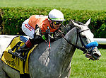 August 21, 2021: Piedi Bianchi #4, ridden by jockey Tyler Gaffalione win the Smart N Fancy Stakes on the turf at Saratoga Race Course in Saratoga Springs, N.Y. on August 21st, 2021. Dan Heary/Eclipse Sportswire/CSM