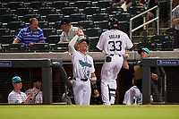 Salt River Rafters Vidal Brujan (33), of the Tampa Bay Rays organization, is congratulated by Royce Lewis (9) after hitting a home run during an Arizona Fall League game against the Mesa Solar Sox on September 19, 2019 at Salt River Fields at Talking Stick in Scottsdale, Arizona. Salt River defeated Mesa 4-1. (Zachary Lucy/Four Seam Images)