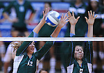Tulane falls to Memphis in women's volleyball action played at Fogelman Arena.