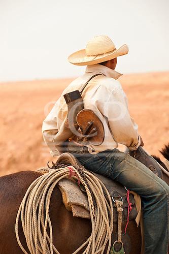 Para State, Brazil. Gaucho - cowboy - with his mule and a Berrante de boi bull horn trumpet.