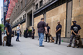 New York New York<br /> June 7, 2020<br /> <br /> After several nights of looting, nearly all ground level windows in Manhattan are covered with plywood. Many of the shops had already been looted others are boarded for protection. <br /> <br /> Saks on 5th Avenue took it to an extreme. Barbed wire, boarded up, fenced in, with a large man (mainly African American) every 10 feet, with K9 dog unit standing all day in front of the store front. Many times the dogs and owners do drills in lockstep while growling and barking at passing pedestrians.