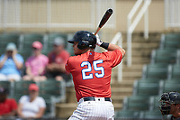 Corey Zangari (25) of the Piedmont Boll Weevils at bat against the Greensboro Grasshoppers at Kannapolis Intimidators Stadium on June 16, 2019 in Kannapolis, North Carolina. The Grasshoppers defeated the Boll Weevils 5-2. (Brian Westerholt/Four Seam Images)
