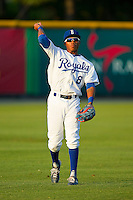 Burlington Royals left fielder Desmond Henry (8) warms up in the outfield between innings of the game against the Pulaski Mariners at Burlington Athletic Park on June20 2013 in Burlington, North Carolina.  The Royals defeated the Mariners 2-1 in 13 innings.  (Brian Westerholt/Four Seam Images)
