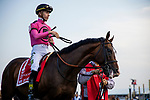 MAY 18: War of Will and Tyler Gaffalione walk to the track in the Preakness Stakes at Pimlico Racecourse in Baltimore, Maryland on May 18, 2019. Evers/Eclipse Sportswire/CSM