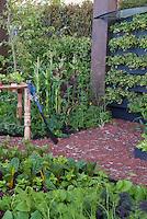 Vegetable Garden and Backyard Deck