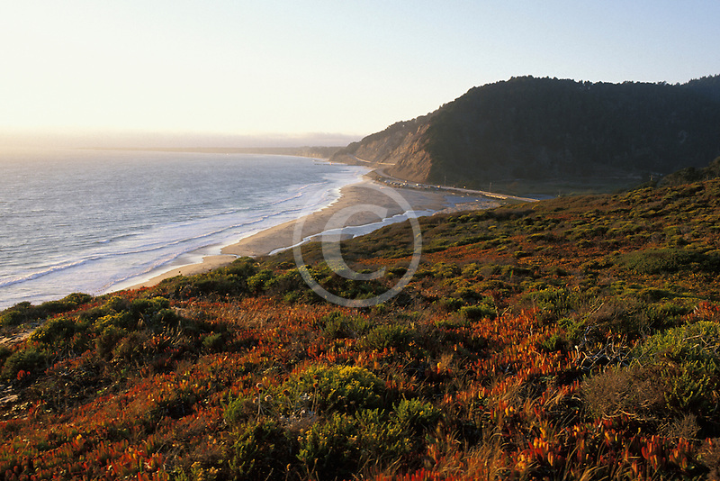 California, Santa Cruz County, Pacific Coast Highway near Santa Cruz