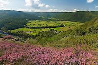 Oppidium du Puy du Tour, site de vol libre