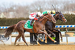 MAR 06, 2021 : Weyburn (inside) #8,  with Trevor McCarthy aboard, Scores an upset wins the Gotham Stakes, for 3 year olds, earning 50 Kentucky Derby points at Aqueduct Racetrack, Ozone Park, NY. Sue Kawczynski-Eclipse Sportswire-CSM