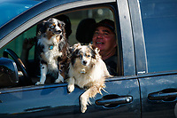 Jun 11, 2017; Englishtown , NJ, USA; NHRA top fuel driver Scott Palmer with his dogs during the Summernationals at Old Bridge Township Raceway Park. Mandatory Credit: Mark J. Rebilas-USA TODAY Sports