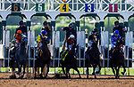 ARCADIA, CA - JUNE 02: Unique Bella #6 with Mike Smith up breaks from the gate as Paradise Woods #4 stumbles at the start of the Beholder Mile Stakes at Santa Anita Park on June 02, 2018 in Arcadia, California. (Photo by Alex Evers/Eclipse Sportswire/Getty Images)