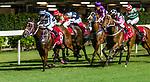 Jockeys riding their horses during Hong Kong Racing at Happy Valley Racecourse on September 12, 2018 in Hong Kong, Hong Kong. Photo by Yu Chun Christopher Wong / Power Sport Images