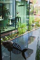 Europe/France/Pays de la Loire/44/Loire Atlantique/Ile de Fedrun/Saint-Joachim: Restaurant: La Mare aux Oiseaux [Non destiné à un usage publicitaire - Not intended for an advertising use]