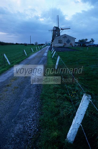 Europe/France/Nord-Pas-de-Calais/59/Nord/Steenvoorde : Moulin de Noordmeulen