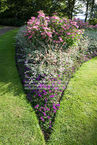 """Richmond Park, England. Colourful flower bed in a """"V"""" shape, in bloom."""
