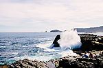 Image Ref: CA978<br /> Location: Bushrangers Bay Track<br /> Date of Shot: 28.09.19