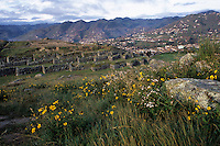 Sacsayhuaman, Cuzco, Peru - Fortress Walls below, as Cuzco expands up hillsides in the background.