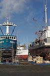 Port Townsend, Port of Port Townsend, Boat Haven Marina, shipyard, seiner, Evening Star, Jefferson County, Olympic Peninsula, Washington State, Pacific Northwest, USA,