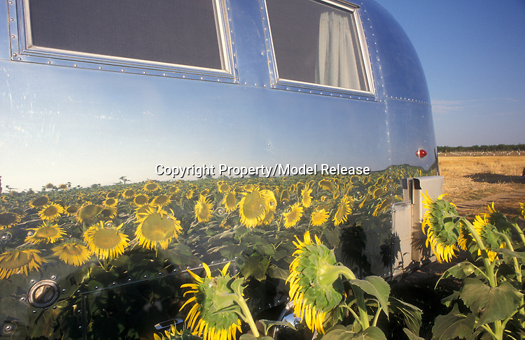 1964 Airstream Globe Trotter vintage travel trailer
