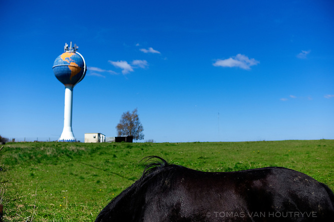 The back of a stout Belgian horse is seen in a field with a water tower decorated like a globe in Opvelp, Belgium on April 20, 2013.