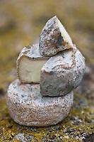 Europe/France/Poitou-Charentes/79/Deux-Sèvres/Arçais: Le Sec, nom local d'un fromage de chêvre sec